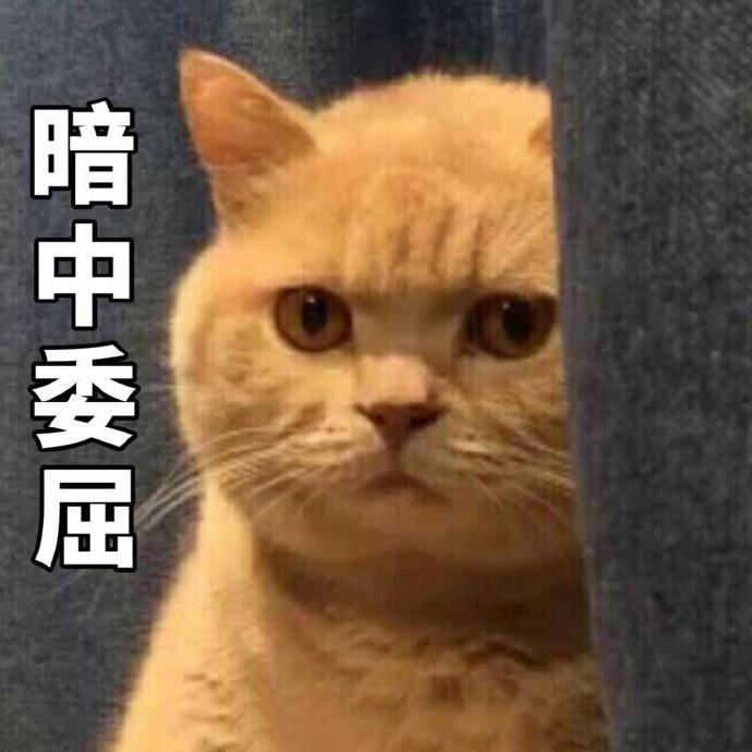 安徽网站优化seo实战平台